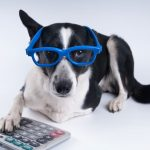 Andy Frye's Under-Utilized Pet Tax Deductions